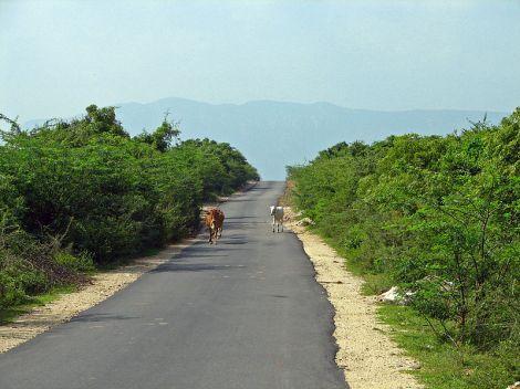 800px-India_TN-AP_rural_circuit